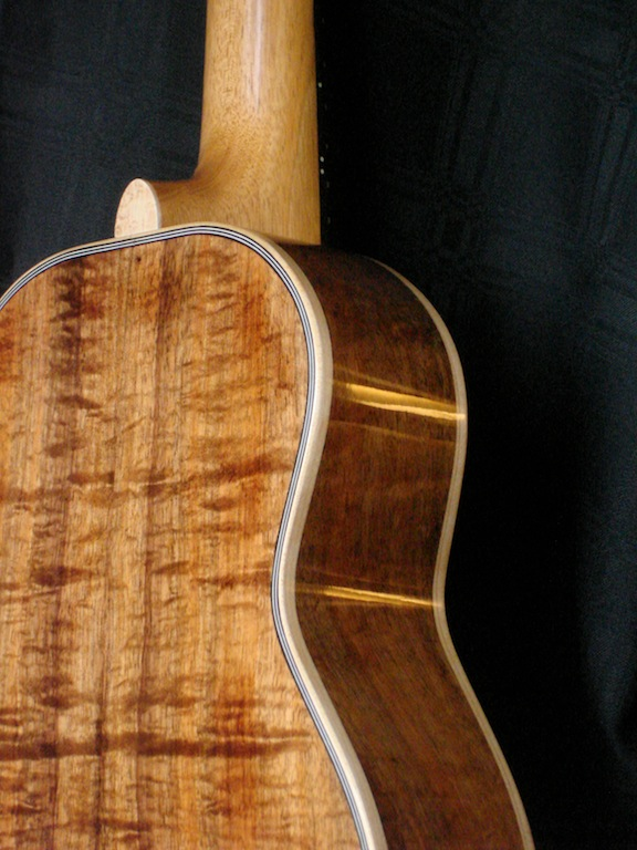 2011-tenor-back-side